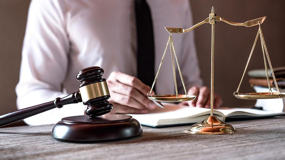 Temas importantes de la ley de Emprendedores